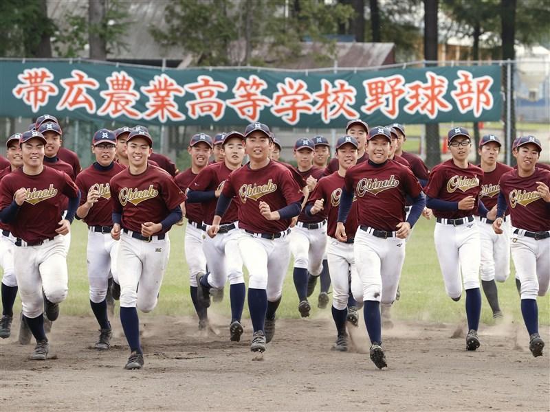 甲子園 部 高校 星稜 野球